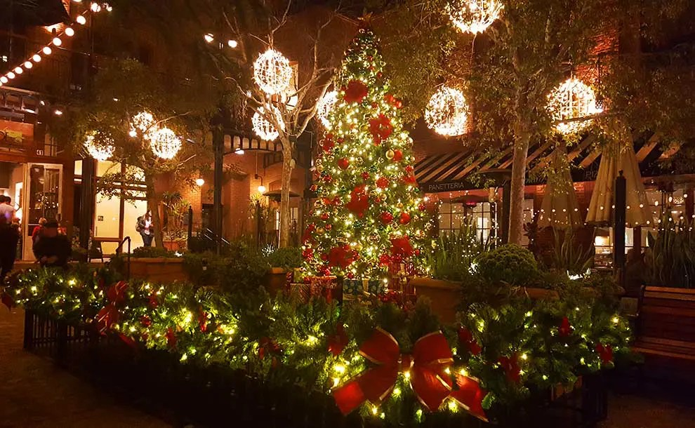 A festive Holiday Tree with lots of lights