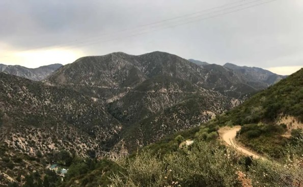 August Rain in Angeles National Forest