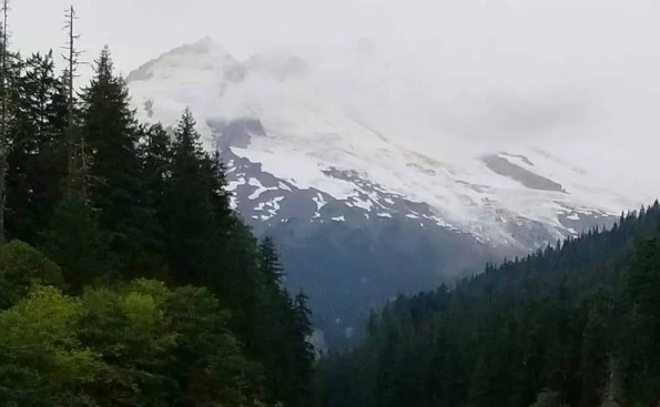 a mountiantop covered with snow and trees in the foreground