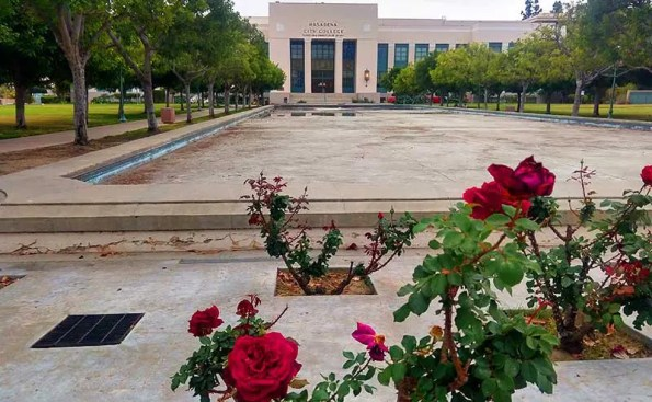 A building with few roses in the forefront