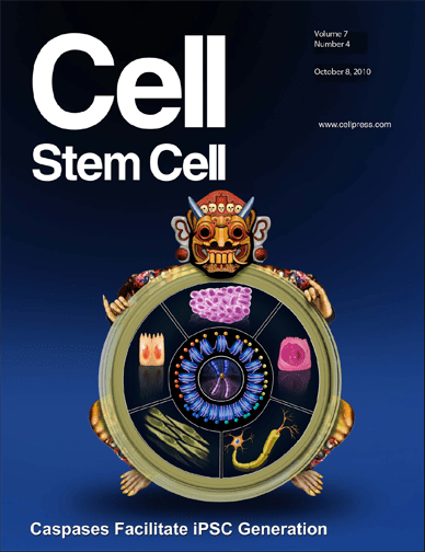 Colorado researcher Li discovers key mechanism for transforming adult cells into stem-like cells