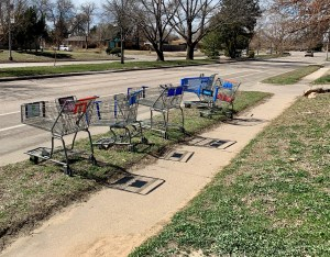 Abandoned shopping carts in Denver's North Park Hill neighborhood (Susan Greene)