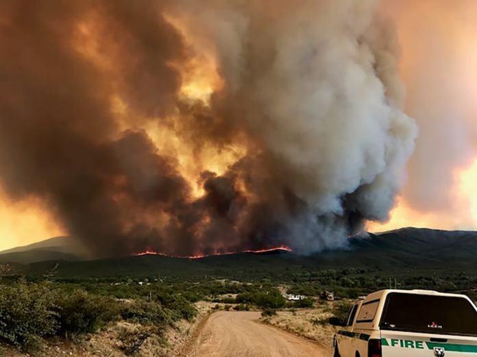 Goodwin Fire, July 2017, Prescott National Forest. (Photo by U.S. Forest Service)