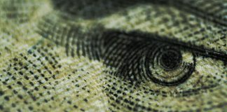A closeup of an eye from a dollar bill.