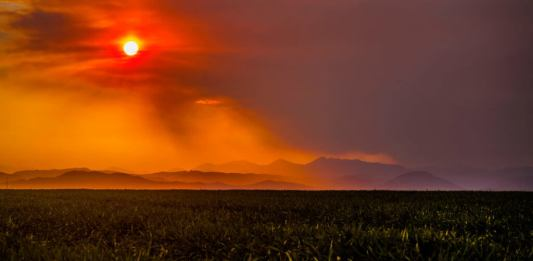 MEDIA: On climate change and Colorado wildfire coverage