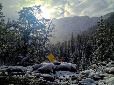 The morning sun highlights a few lingering airborne snowflakes after this year's first valley snowfall.