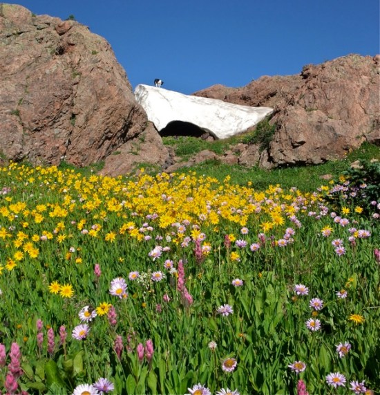 Rocky Mountain summer snow cave