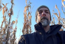 Neal Stephenson stands in a cornfield in Iowa