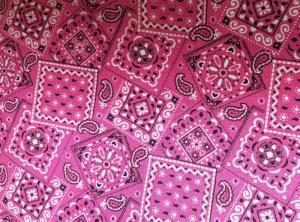 hot_pink_paisley