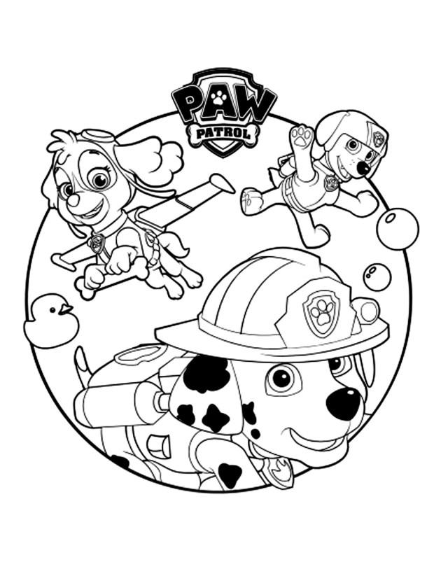 Coloriage Pat Patrouille - Coloriages pour enfants