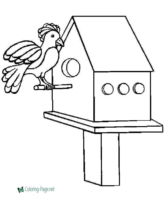 bird house  bird coloring pages