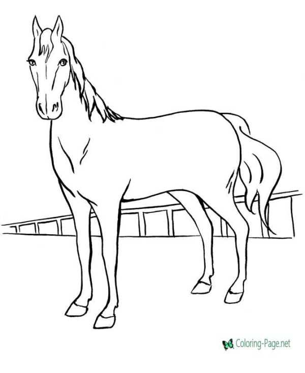 realistic horse coloring pages # 4