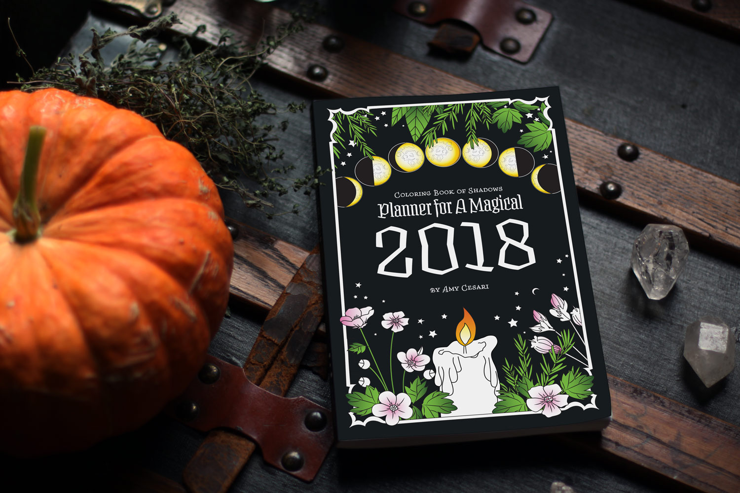 Planner For A Magical 2018 Coloring Book Of Shadows