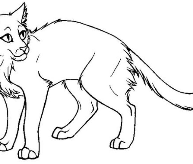 Printable Warrior Cat Coloring Pages Coloringme Com