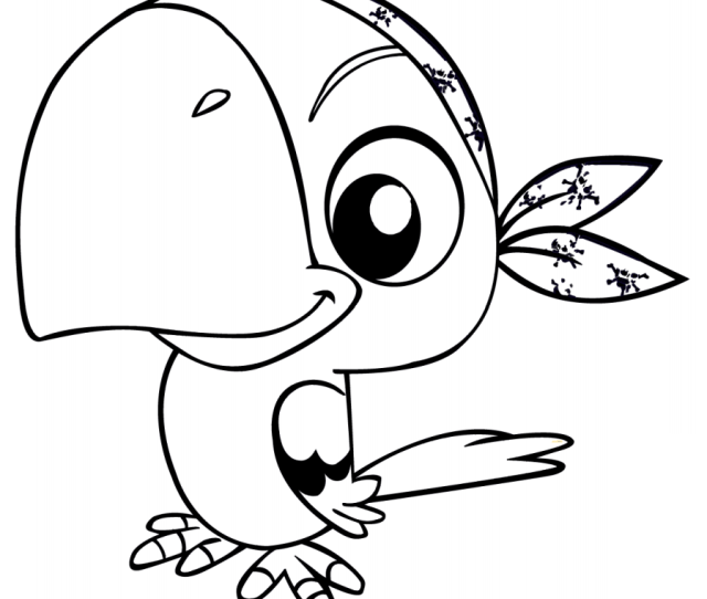 Cartoon Pirate Parrot Coloring Page Free Printable Coloring