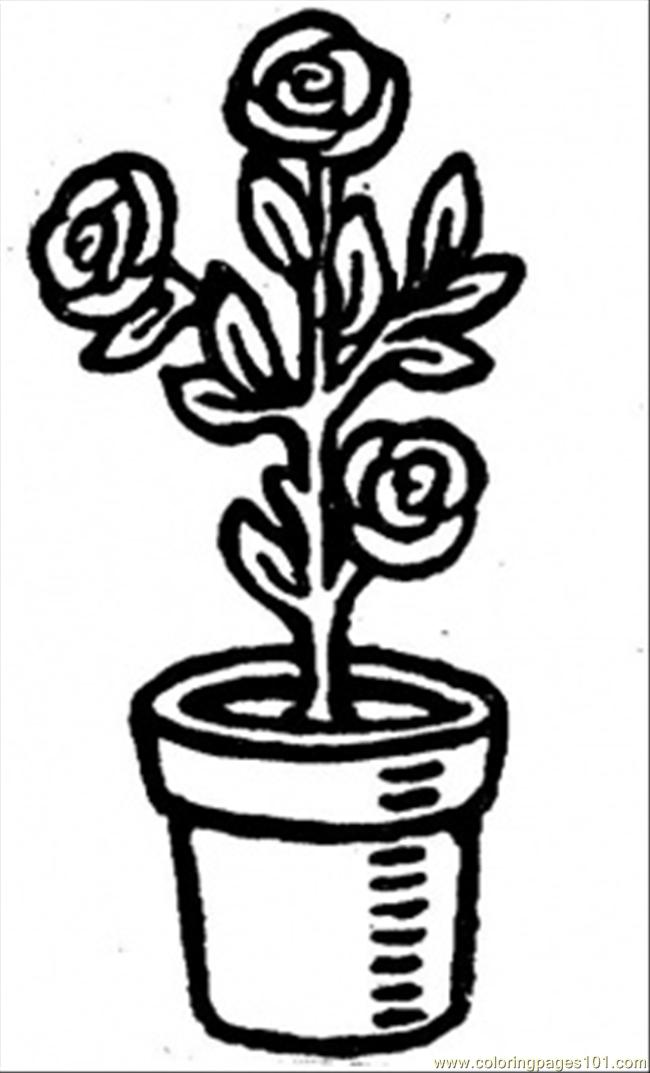 Roses In A Pot Coloring Page Free Flowers Coloring Pages