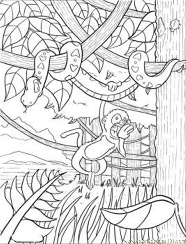rainforest coloring page  free forest coloring pages