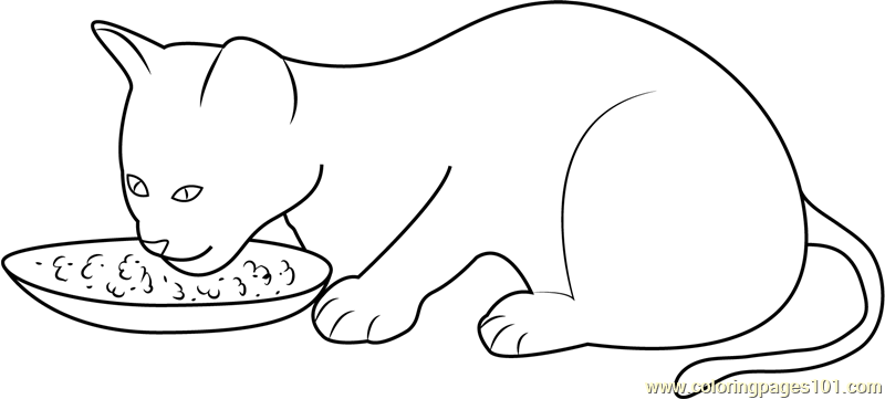 Kitten Eating Her Food Coloring Page Free Cat Coloring