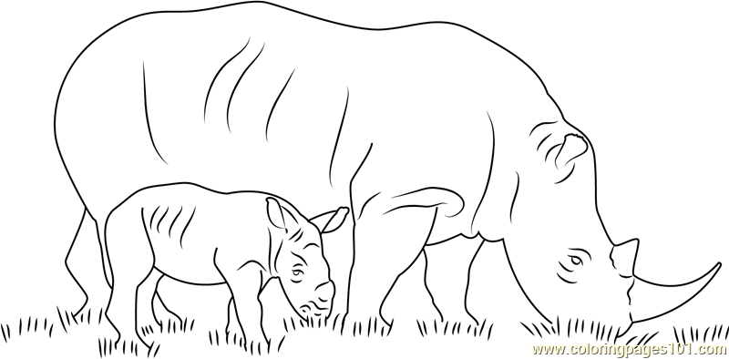 Rhino With Her Baby Coloring Page Free Rhinoceros