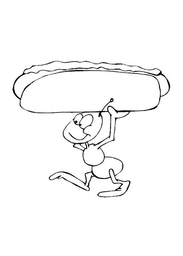 ants carrying big hot dog coloring page  coloring sky