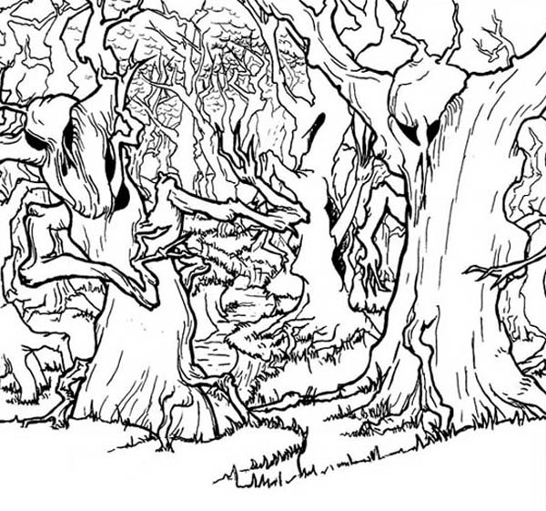 haunted forest coloring page  coloring sky