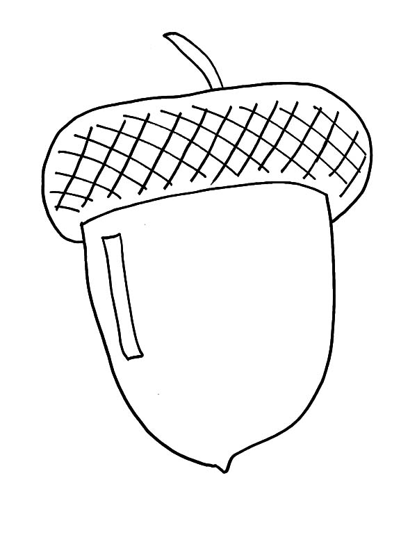 acorn coloring page # 18