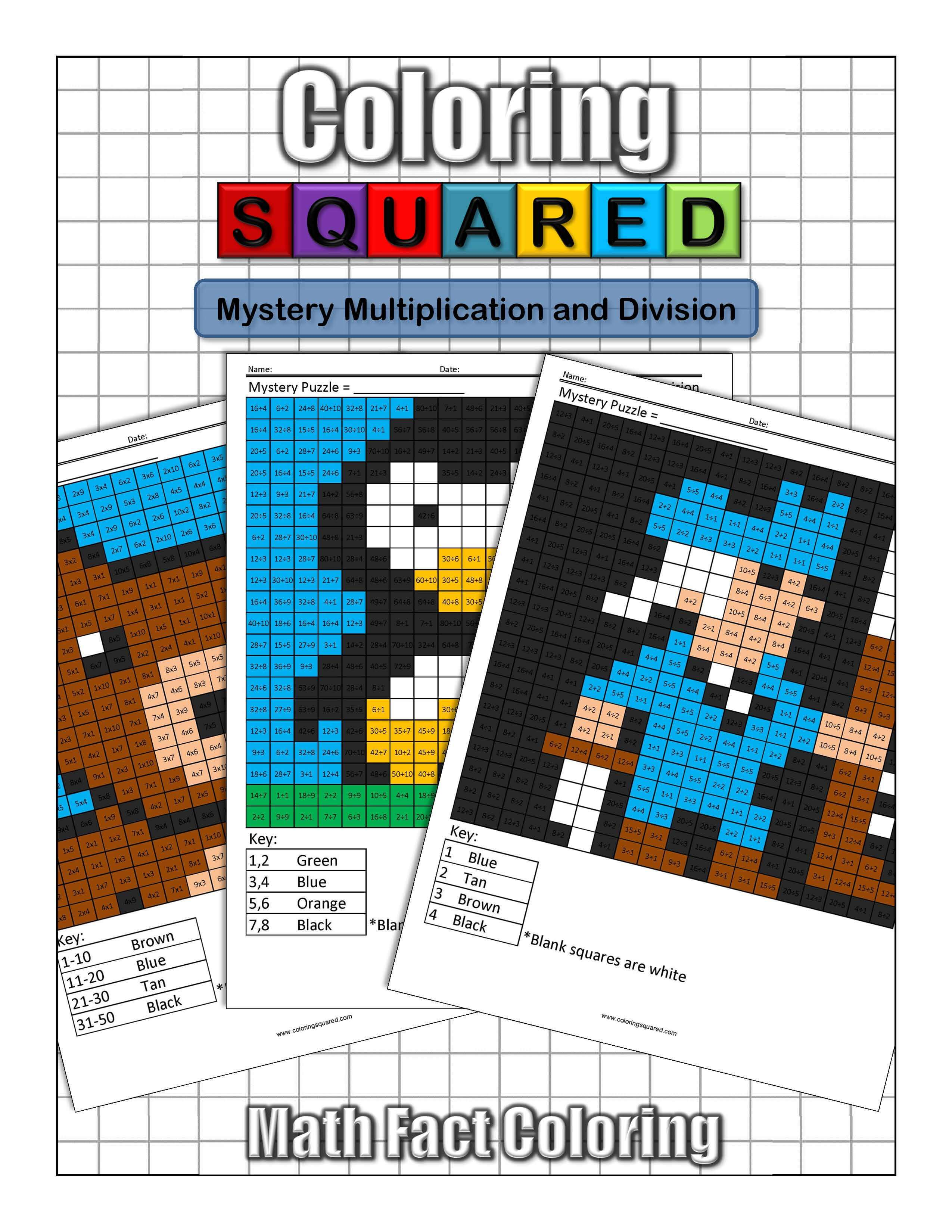 Mystery Multiplication And Division