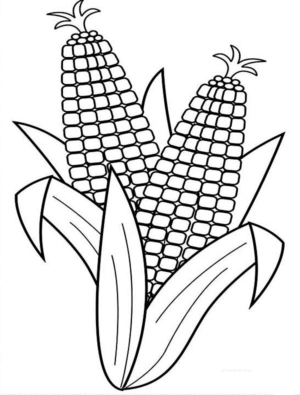 Corn Coloring Sheets Free Printables | Coloring Page for kids