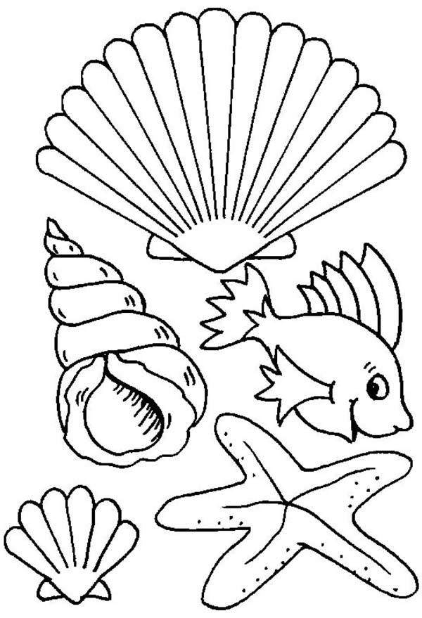 Fish Coloring Page Sheets