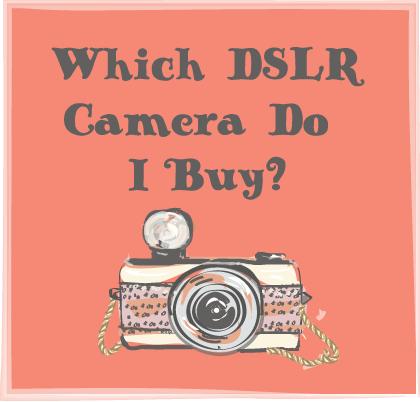 Which DSLR Camera Should I Buy Color Splash Studio Kalamazoo Family Photographer Newborns