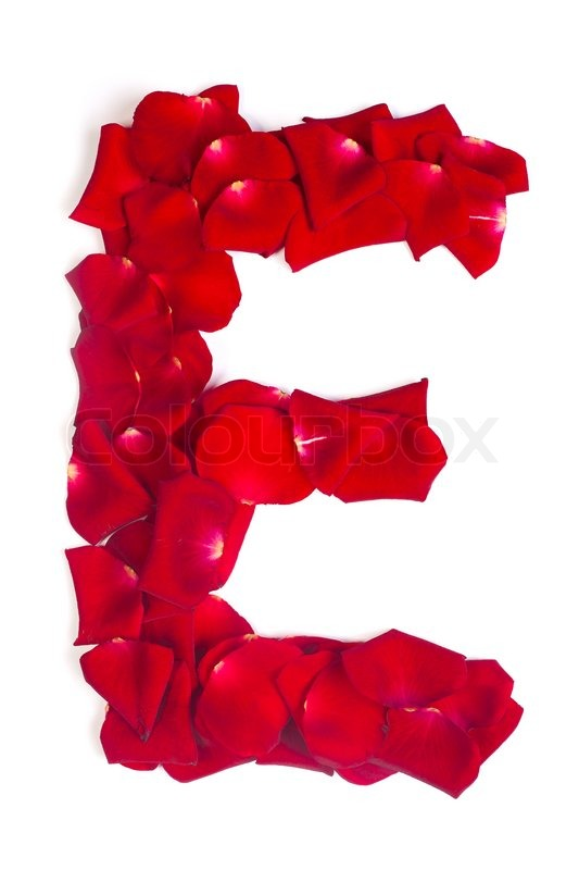 Letter E Made From Red Petals Rose On Stock Photo