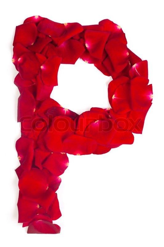 Letter P Made From Red Petals Rose On White Stock Photo