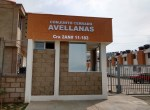 avellanas (8)