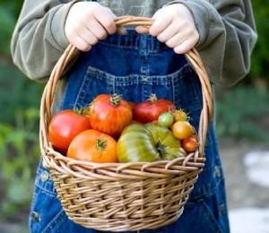 I 10 ortaggi più facili da coltivare sul proprio balcone