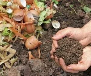Compost domestico - Come fare compostaggio- mani nella terra