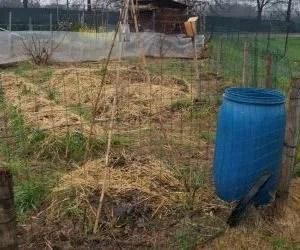 Il ciclo dell'acqua e la progettazione di un orto in permacultura - cisterna di raccolta