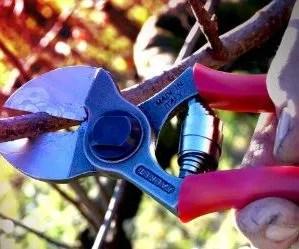 attrezzi per la potatura-cesoia a doppio taglio