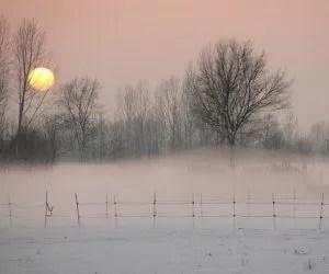 Il ciclo dell'acqua e la progettazione dell'orto in permacultura - nebbia