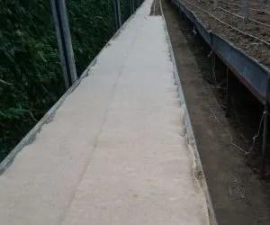 teli di juta per pacciamatura biodegradabile-orto-seconda stesura