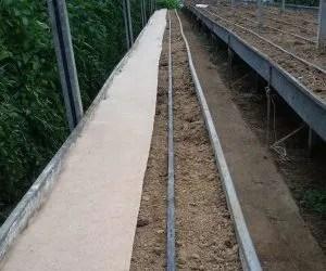 teli di juta per pacciamatura biodegradabile orto-parte rimasta scoperta