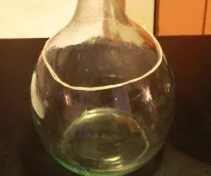 Come trasformare una bottiglia in un vaso di vetro per le piante grasse