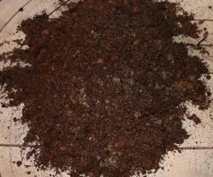 Terriccio per la coltivazione del rosmarino