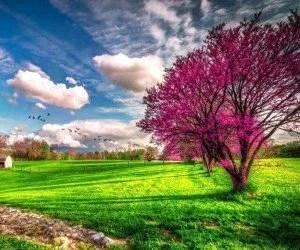 Il calendario del mese di aprile primavera