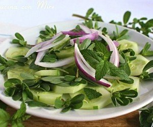 Portulaca oleracea insalata mista