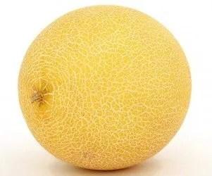 Melone reticolato