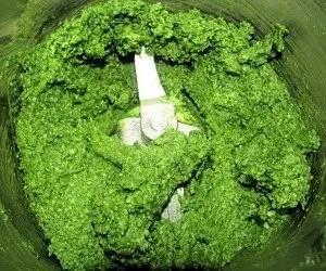 Pesto di basilico passato al mixer