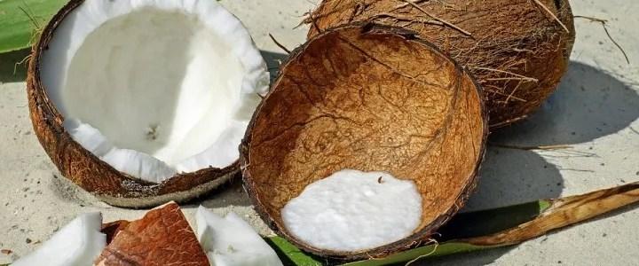 La noce di cocco, il frutto esotico più amato