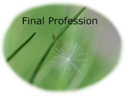 final-profession