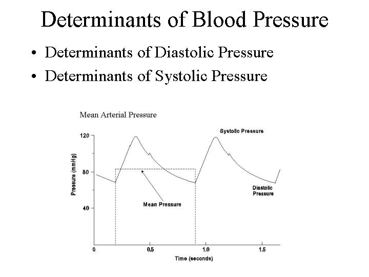 Cable Pressure Aterial Blood