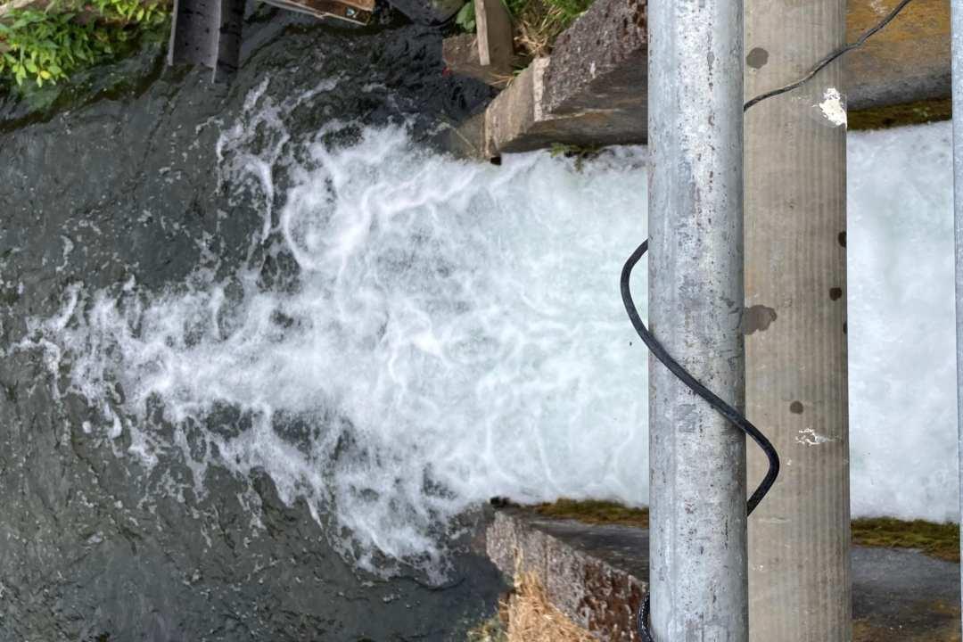 water flowing through west biddle lake dam